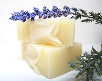 Earl Grey Lemon All Natural Shampoo Bar, Shampoo Soap, Natural Hair Care, Shampoo, Soap, Earl Grey