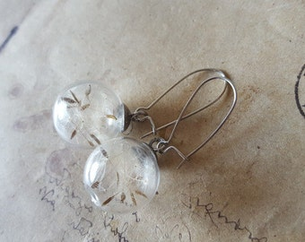 Dandelion flowers earrings