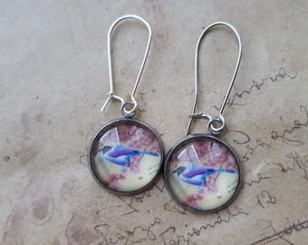 Cabochon earrings ~ Bluetit ~.