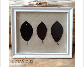 Rustic white frame with Tame Choke Cherry leaves
