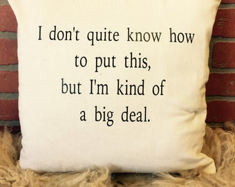 I don't quite know how to out this pillow cover * free shipping