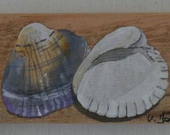Shell image, acrylic painting, old wooden board