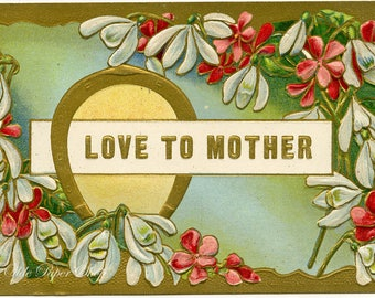 Love to Mother Vintage Embossed Postcard Red White Light Blue Flowers Horseshoe 1909