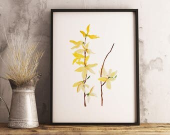 Forsythia Painting, Watercolor Flower Print, Watercolor Illustration, Drawing, Minimalist Wall Decor, Yellow Floral Art, Scandinavian Art