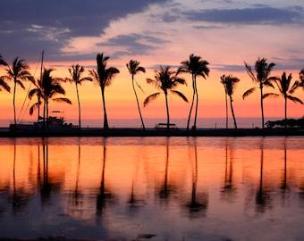 Tropical Mural Paradise beach tropical palm trees Premium Tropical Mural (adhesive included)