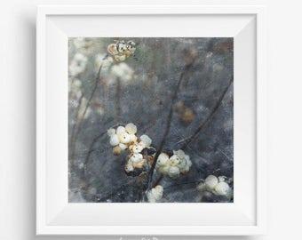 Boho wall decor, flower print, botanical art, living room decor, floral print, house warming gift, bohemian decor, poster vintage, art print