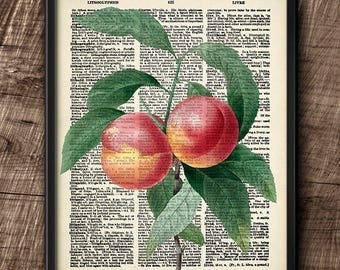 Peaches · Instant Download · Dictionary · Vintage · Wall · Fruit · Printable · Digital File #106