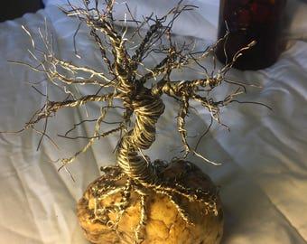 Spike Top Bonsai, Wire Tree, Twisted Wire Tree,