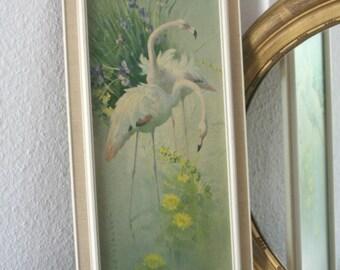"""Vernon Ward, art print """"White flamingos"""""""