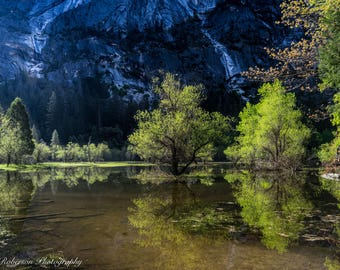 Mirror Lake Yosemite Wall Art Print -- Fine Art landscape photography, Nature, Forest, Trees, Home Decor by HeatherRobersonPhoto