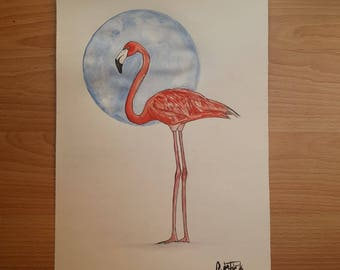 Flamingo (Stardust)