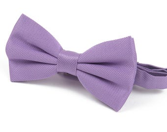 Bow Wow Lavender