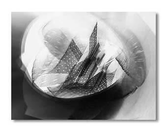 Photogram - PDF - DIN A4 - 18 x 24 cm