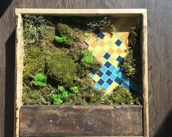 "12"" by 12"" Moss & Mosaic in Reclaimed Wood Frame  with Real Preserved Moss - No Care Green Wall Art"