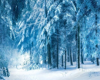 Forest in winter, blue