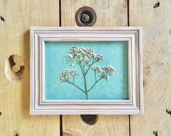 Pressed & Framed Baby's Breath