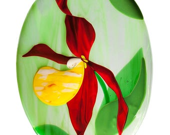 Plate Lady's-slipper