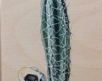 Cactus and bird skull