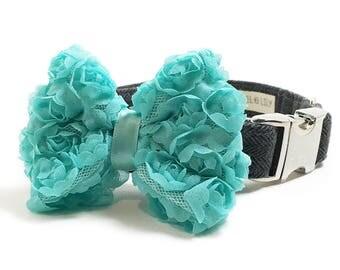 Dog Collar Bow - Turquoise Chiffon Dog Collar Bow - Dog Collar Attachment - Dog Collar Accessory - Girl Dog Bow - Wedding Dog Bow