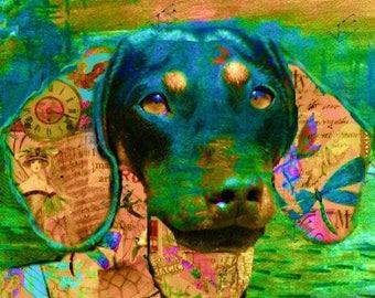 Pop Art Dachshund Puppy Dog - 5x7 - Instant Download