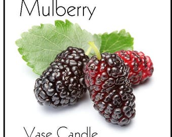 Mulberry Vase Candle Refill - Scented, Soy, Paraffin Wax, Paper Core, Self-trimming Wick, Refillable Vase, 50 Hour Burn Time Each