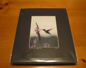 031 8x10 Matted Hummingbird Signed Photography Photograph Print