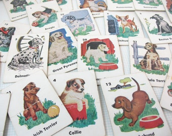 Vintage Puppy Dog Breed Cards - 5 Old Cardboard Cards - Junk Journal Supply - Scrapbook Ephemera - Banner Buntings