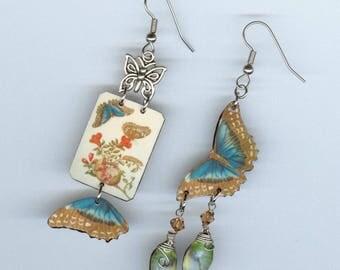 Blue Butterfly earrings - blue morpho vintage illustration - cacoon metamorphosis chrysalis - nature lovers botanist entomologist gift