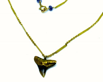 Shark Tooth 24k Yellow Gold Electroplated Pendant