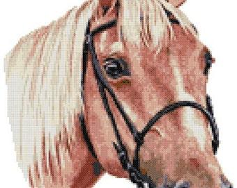 Palomino horse counted cross stitch kit