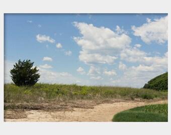 Massachusetts Art, Cape Cod Landscape, Falmouth Coast, Minimalist Landscape, Blue Green Landscape Photograph, Horizon Line Photo Print