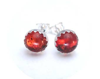 Amber Stud Earrings 6mm in Sterling Silver Amber Jewelry