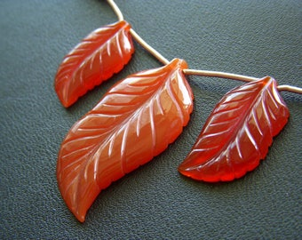 Huge Carved Carnelian Leaves - Trio - 27 to 43mm - 55 tcw