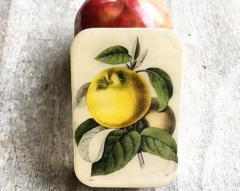 Botanical apple tin, notions tin, credit card case