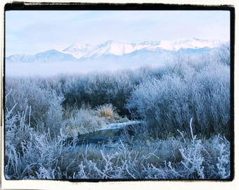 Land of the Frost Giant