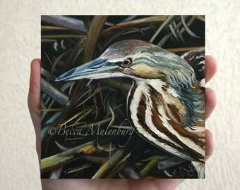 American Bittern Original oil painting miniature bird art wildlife nature fine art