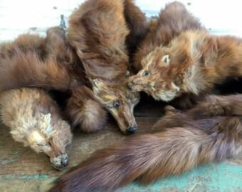 Vintage Brown Mink Shawl Collar Muffler Stole 3 Full Pelts Heads Feet Tails #1