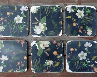 Set of six vintage paper coasters in black and white with a floral botanical design