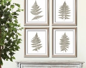 Fern Fantasy Impressions (Series B4) Set of 4 - Art Prints (Featured in Stone Wash) Nature Woodland Inspired