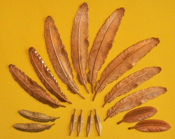 Feather stampings