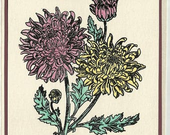 Flower of the Month-November's Chrysanthemum