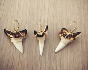 Burnished shark tooth pendant