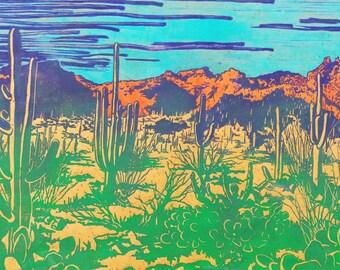 Sonoran Desert on Brown