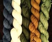 "Hand Dyed Gradient Set Mini Skeins ""Moss""  SW Merino/Nylon  100Grams"