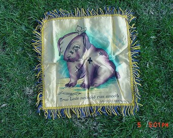 Vintage Pillow Cover Las Vegas New Mexico True Love Never Did Run Smooth  17 - 436