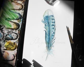 Handpainted, Original 4x6, Watercolour, Feather Study No.33. NOT A PRINT , blue jay, Original Painting, fine art-