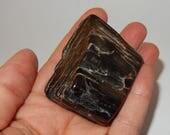 Petrified Wood - polished