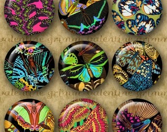 SEGUY BUTTERFLIES 1 inch Circles - Digital Printable collage sheet for Jewelry Pendants Magnets Crafts...Papillons Butterflies Art Deco