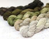 Hand dyed Yarn Superwash Merino DK Mini Skeins, Gradient, 54 yards each skein, green earth gradient