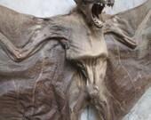 """Large Bat Sale 19.5"""" Sphinx Bat Specimen - SHIP FREE 2"""